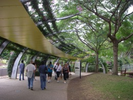 Trees provide shade for visitors
