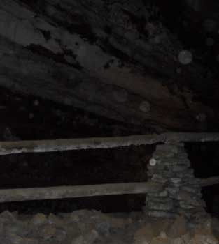 Pipelines from saltpeter mining that occurred in the cave during the War of 1812. They are made of hollowed out logs.