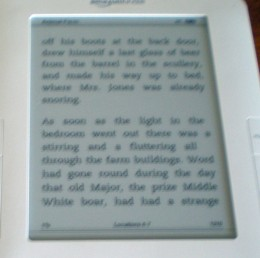 "The Kindle text is plain and you turn pages by clicking the ""next page"" button"