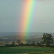 Rainbow6 profile image
