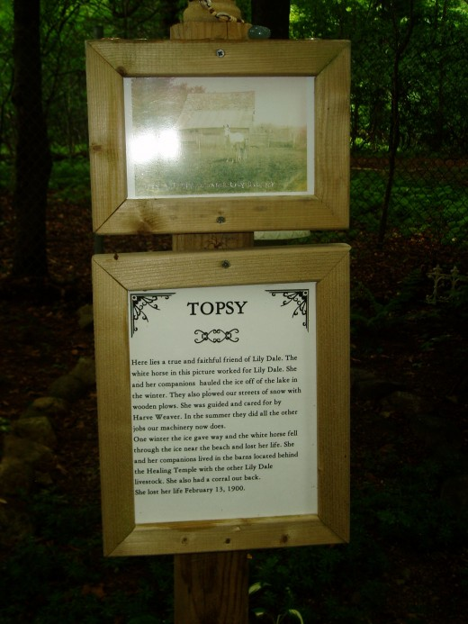 Topsy's gravesite (Lily Dale's workhorse).  Photo by Gerber Ink