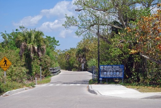 Auto Entrance to the Preserve