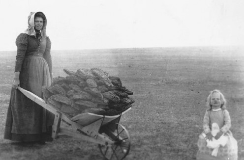 Pioneer women often would collect buffalo chips to make fires to cook with.