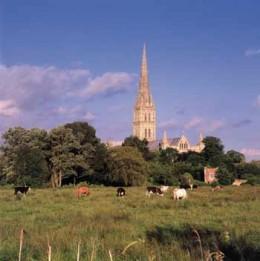 That wonderful spire