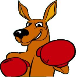 Boxing Kangaroo Stock Images RoyaltyFree Images