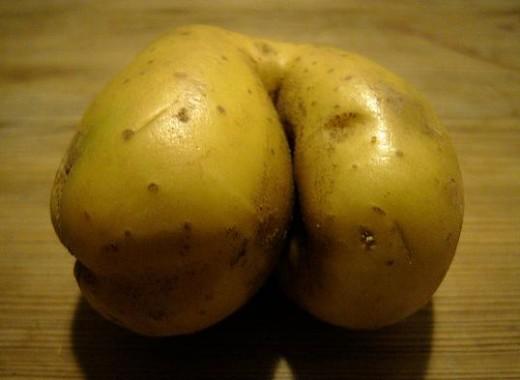 This potato looks like a butt