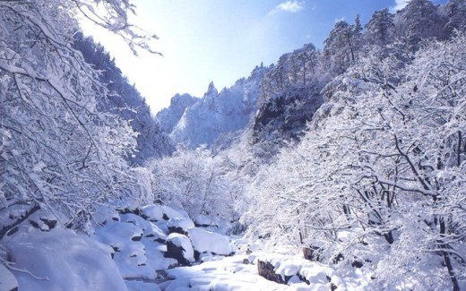 Korean Mountains in Winter