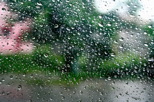 the raindrops from my window pane