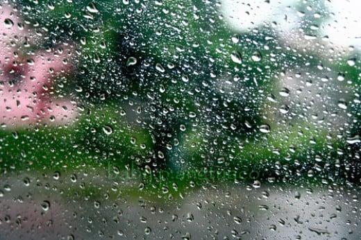 the raindrops from my window pane