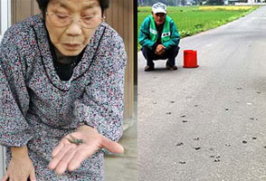 Mrs. Miyagi found the frog in her house