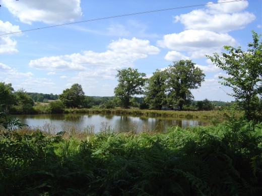 Limousin is full of lakes, ponds and rivers, great for fishing and wildlife