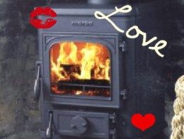 Passionate About Wood Burning Stoves!