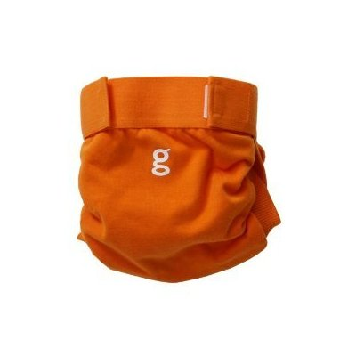 The gDiaper hybrid  A cloth diapering alternative.