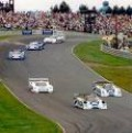 Even race cars have to save gas, fuel to win the race
