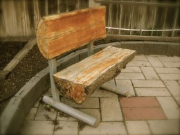 Bench my father made out of a log.