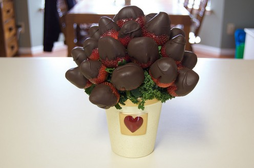 Chocolate Strawberry Tree an Edible Strawberry Tree
