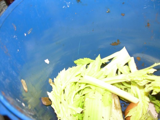 Kitchen scraps in the compost bucket