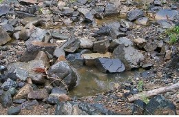 Spiritual water is our  spiritual thirst-quencher...even when it is only a small drink in the rocky canyon.