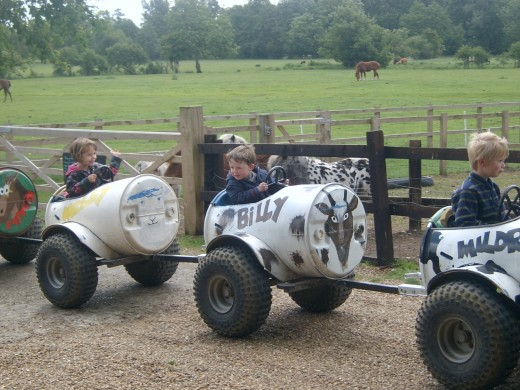 Lets go for a ride at Easton Farm Park