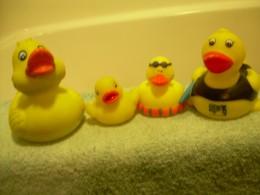 Ariel's rubber duckies