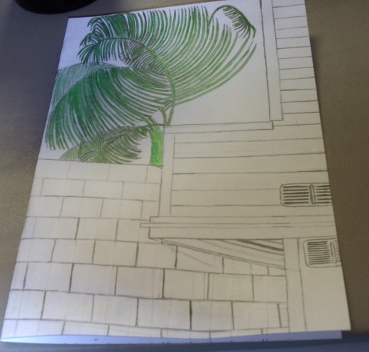 Here I finished colored in my palm tree.