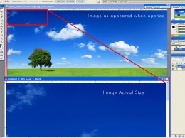 An example of a re-sized picture versus its actual size.