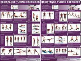 Set of Two Purple and White Exercise Posters Charts with Diagrams Detailing Different Movements