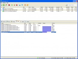 You can use uTorrent to open Torrent files ang download files