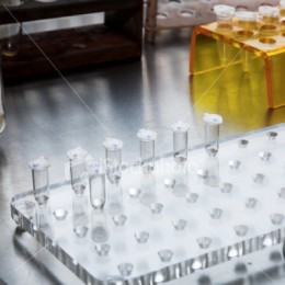 Biological science relies on a huge amount of experimentation and observation.