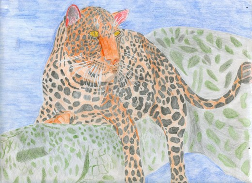 Draw a picture of a leopard for African inspired stationery. Credit: Sweetiepie on Hubpages.