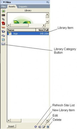 Library category of the Assets Panel in Dreamweaver Cs3