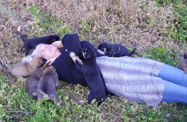 Happiness is a bunch of puppies.