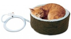 Heated Cat Beds, Why Vets Recommend Them