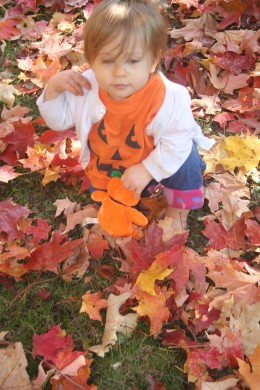 Playing with colorful autumn leaves