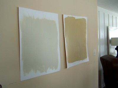 paint samples on the wall