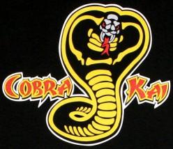 cobra kai snake karate kid