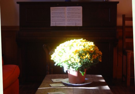 There is a living room with piano in the Bed and Breakfast