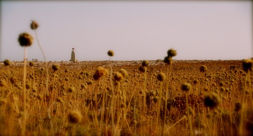 lighthouse in the distance, on the edge of Sagres point