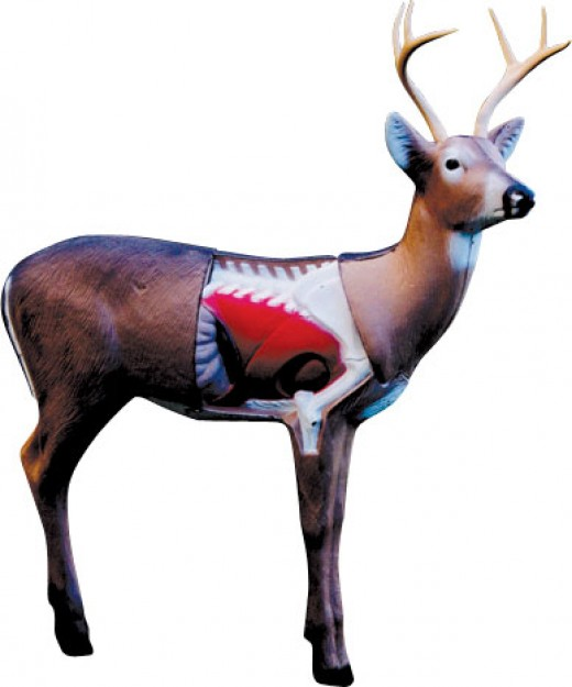 You want to practice until you can put your crossbow bolts in the red part of the deer on the deer target above.