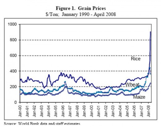 Rising grain prices have many causes. The basic cause for 2010 is the loss of crops by drought and flood. Wheat and rice will be most effected.