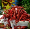 Crayfish party- a fun and tasty Swedish tradition!