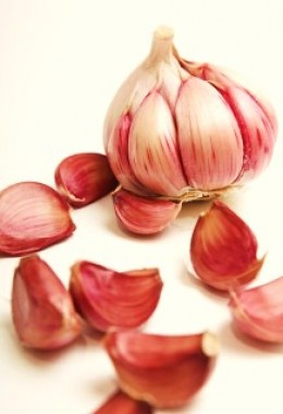 Garlic bulb.