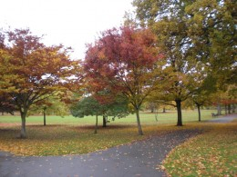 My local park, Autumn 2009.