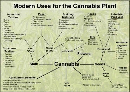 Modern use of hemp and cannibis