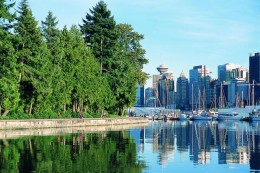 This is a view of the eastern tip of Stanley Park from the water near the boat marina.