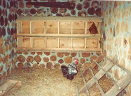 Kruza House interior