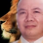 SirGanz profile image