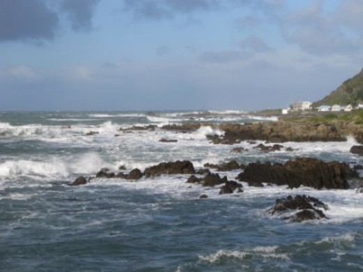 Welliington's Rugged South Coast