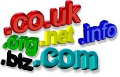 Domain Registration Renewal