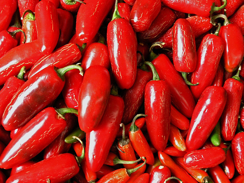 Red chillies as hot as the color shows
